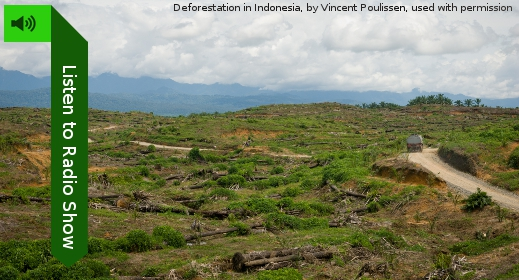 Listen to Radio Show (pic of cleared forest; a truck drives away along a dirt road)